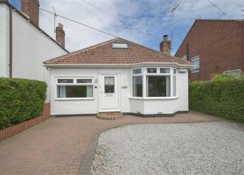 Thumbnail 4 bed bungalow to rent in Boothferry Road, Hessle