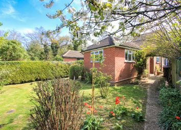 Thumbnail 3 bed semi-detached house for sale in The Crescent, Chartham, Canterbury