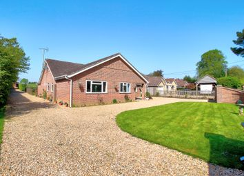 Thumbnail 4 bed bungalow for sale in Lymington Bottom Road, Medstead, Alton