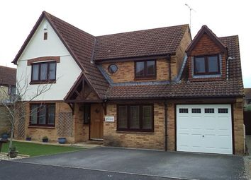 Thumbnail 5 bed detached house to rent in Hills Orchard, Martock