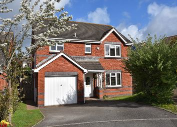 Thumbnail 4 bed detached house for sale in Grecian Way, Broadmeadow, Exeter
