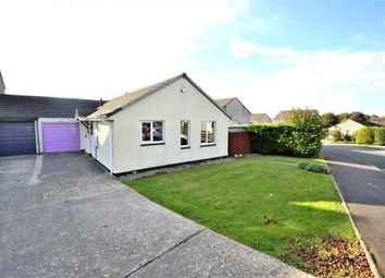 Thumbnail 2 bed bungalow for sale in Beech Road, Callington, Cornwall