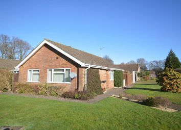 Thumbnail 3 bed detached bungalow for sale in The Spinney, Grayshott, Hindhead