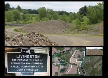 Thumbnail Land for sale in County Route 19 Livingston, Livingston, New York, 12534, United States Of America