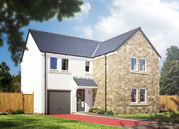 """Thumbnail 4 bed detached house for sale in """"The Lismore V5 """" at Lyness Court, Millfield Drive, Polmont, Falkirk"""