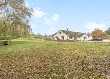 Thumbnail 4 bed detached bungalow for sale in Moreton Road, Owermoigne, Dorchester, Dorset