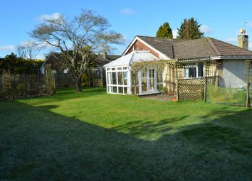 Thumbnail 4 bed detached bungalow for sale in St. Johns Close, Donhead St. Mary, Shaftesbury