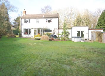Thumbnail 4 bed detached house to rent in Broadmead, Sway, Lymington