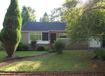 Thumbnail 3 bed detached bungalow to rent in Churchill Place, Kilbarchan, Johnstone