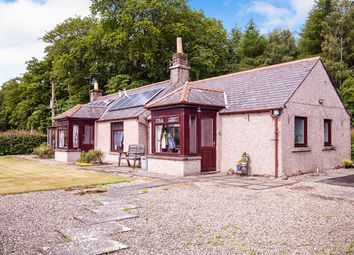Thumbnail 3 bed bungalow for sale in Brechin