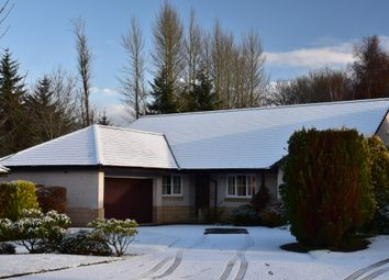 Thumbnail 4 bed detached bungalow for sale in Balmyle Grove, Dunblane