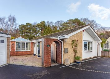 3 bed bungalow for sale in South Western Crescent, Lower Parkstone, Poole, Dorset BH14