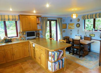4 bed detached house for sale in Cole Moore Meadow, Tavistock PL19