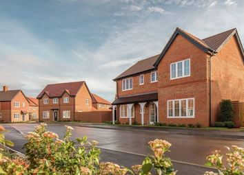 """4 bed detached house for sale in """"The Alfold Osmore"""" at Sachel Court Drive, Alfold, Cranleigh GU6"""
