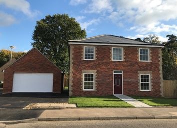 Thumbnail 4 bed detached house for sale in Rosecroft Way, Thetford