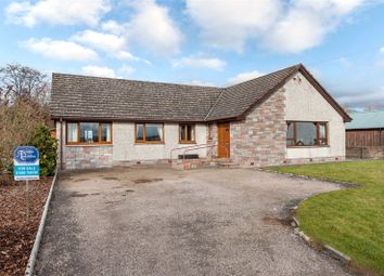 Thumbnail 4 bed bungalow for sale in Inchley, School Road, Luthermuir, Laurencekirk