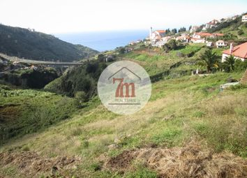 Thumbnail Land for sale in Campanário, Campanário, Ribeira Brava