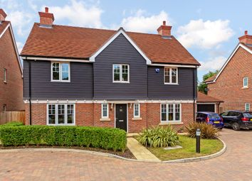 Thumbnail 5 bed detached house for sale in Salix Close, Welwyn
