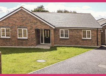 Thumbnail 3 bedroom detached bungalow for sale in Plot 6, Maes Y Llewod, Bancyfelin