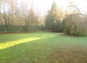 Thumbnail 4 bedroom detached house to rent in Hyholmes, Bretton, Peterborough, Cambridgeshire.