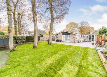Thumbnail 4 bed detached bungalow for sale in Delamere Road, Colchester