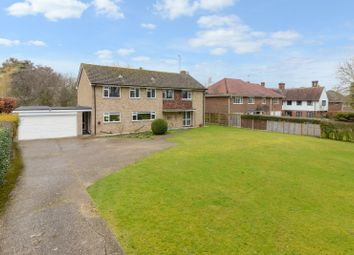 Thumbnail 4 bedroom detached house for sale in Nackington Road, Canterbury