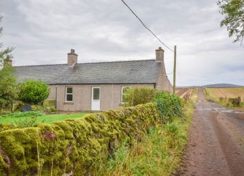 Thumbnail 2 bed semi-detached house to rent in Broom Farm, Tannadice, Angus