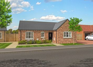 Thumbnail 3 bed detached bungalow for sale in Repps Road, Martham, Great Yarmouth
