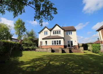 Thumbnail 4 bed detached house for sale in Beech Avenue, Ripley, Derbyshire