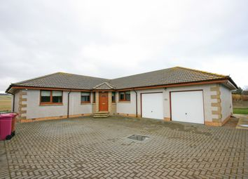 Thumbnail 4 bedroom detached bungalow for sale in Richard House, Richmond Place, Portgordon, Buckie