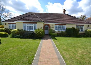 Thumbnail 3 bed detached bungalow to rent in Spencers Piece, School Road, Langham, Colchester