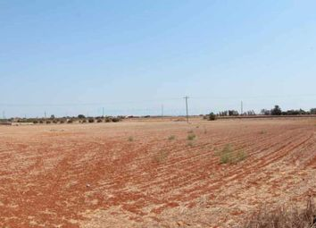 Thumbnail Land for sale in Land Achna, Achna, Famagusta