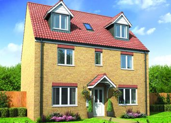"Thumbnail 5 bed detached house for sale in ""The Newton"" at Harlestone Road, Northampton"