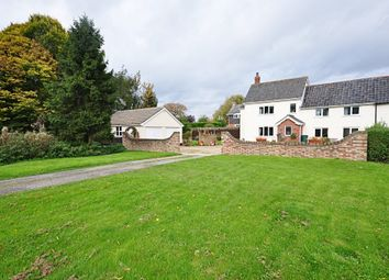 Thumbnail 4 bed cottage for sale in The Common, Stuston, Diss