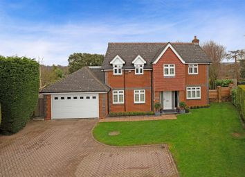 Thumbnail 5 bed detached house for sale in Danesbury Park, Hertford