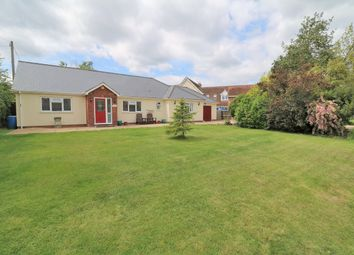 Thumbnail 4 bed detached bungalow for sale in Brook Street, Great Bromley, Colchester