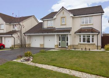 Thumbnail 4 bed detached house for sale in Fulmar Crescent, Larbert