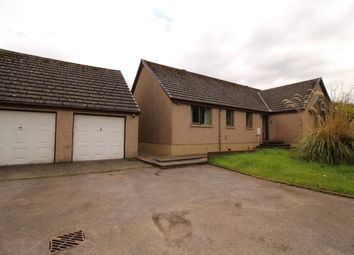 Thumbnail 4 bed bungalow to rent in Lochside, St. Cyrus, Montrose