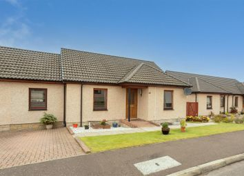 Thumbnail 2 bed semi-detached bungalow for sale in Hutchison Drive, Scone, Perth