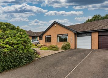 Thumbnail 2 bed semi-detached bungalow for sale in Woodburn Place, Houston, Johnstone
