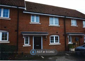 Thumbnail 3 bed terraced house to rent in Lapwing Grove, Stowmarket