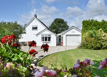 Thumbnail 4 bed detached house for sale in Red Lane, Rosudgeon, Penzance