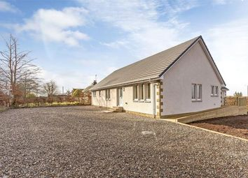 Thumbnail 4 bed detached bungalow for sale in Strawberry Fields, Lintrose, Campmuir, Blairgowrie
