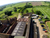 Equestrian property to rent