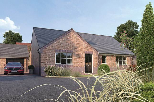 Thumbnail Detached bungalow for sale in The Claydon, Scarsdale Green, Bolsover