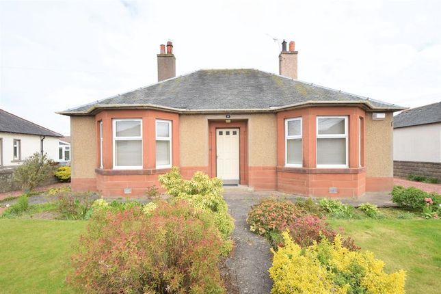 Thumbnail Detached house to rent in Mid Road, Biggar