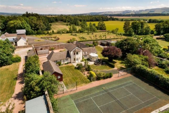Thumbnail Detached house to rent in Meigle, Blairgowrie