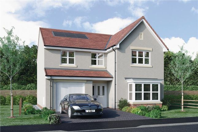 """4 bed detached house for sale in """"Mackie"""" at Lasswade Road, Edinburgh EH17"""
