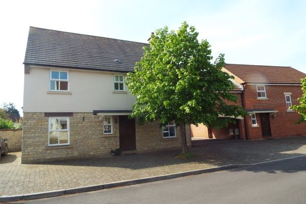 Thumbnail Property to rent in Osmond Drive, Wells