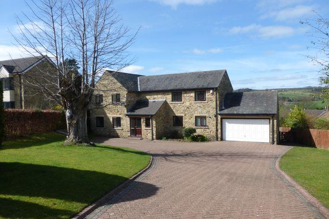 Thumbnail Detached house for sale in Peile Park, Shotley Bridge